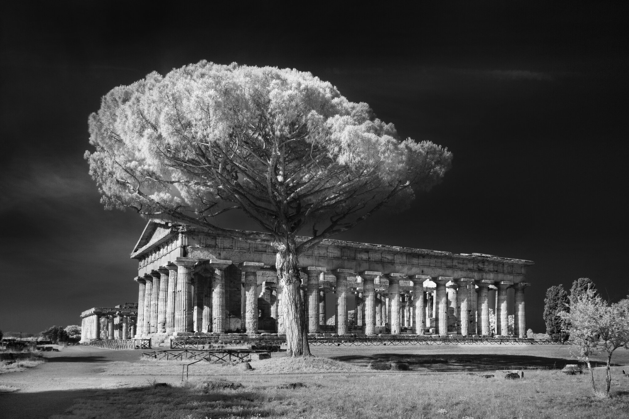 A Paestum le fotografie di Marco Divitini