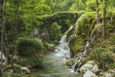 Lo studio: in Europa natura in rapido declino