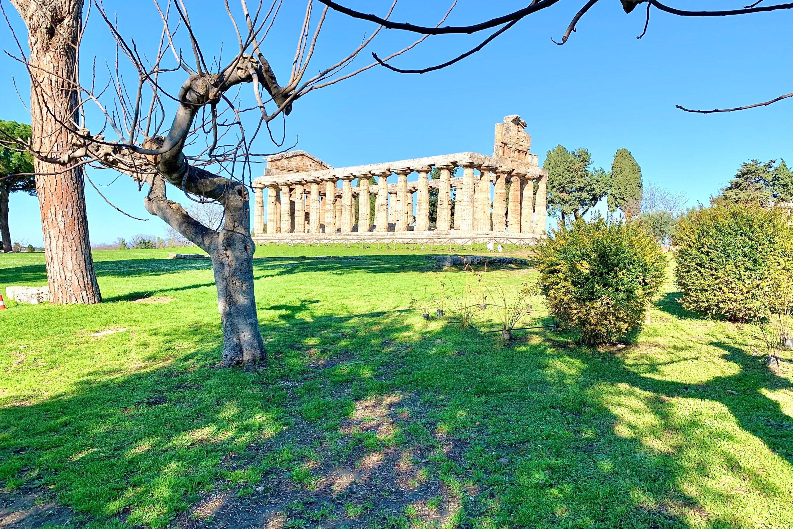 Il Parco Archeologico di Paestum e Velia riapre le porte ai visitatori